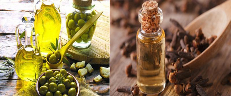 Sử dụng dầu oliu và dầu đinh hương có tác dụng giảm sâu răng cho trẻ hiệu quả