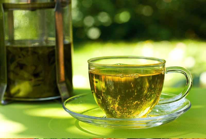 Bị viêm lợi nên ăn gì?Uống trà xanh mỗi ngày tốt cho nướu