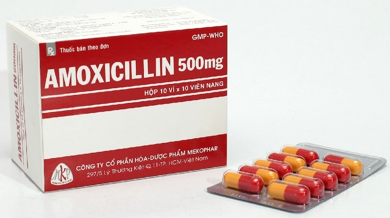 Amoxicillin là một loại kháng sinh được dùng phổ biến điều trị viêm nhiễm
