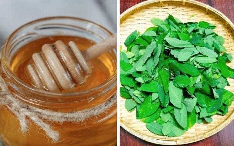 Không kết hợp mật ong với nước rau ngót khi chữa tưa lưỡi cho trẻ dưới 12 tháng tuổi