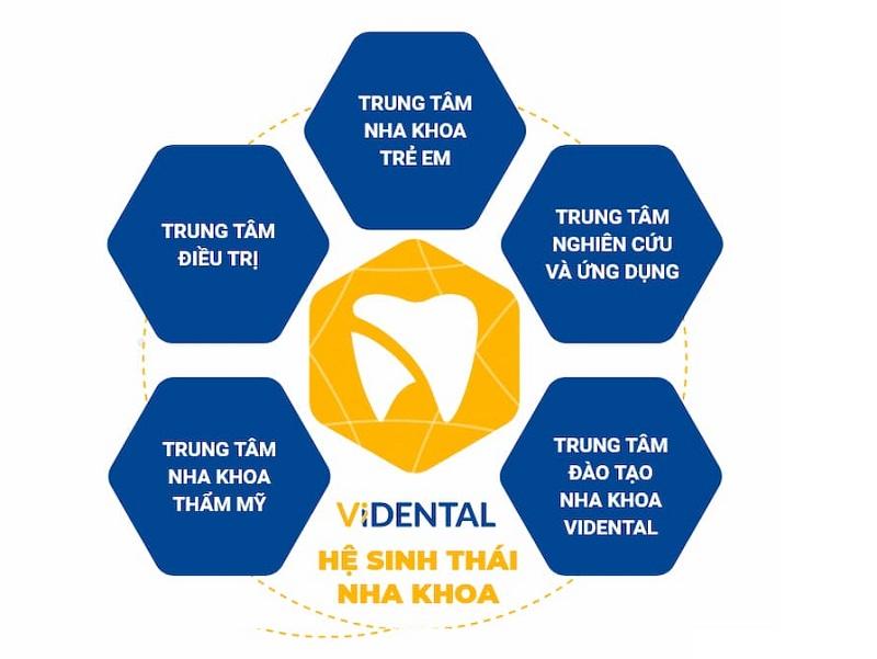 Vidental - Một trong những địa chỉ tin cậy để bạn điều trị hiệu quả các bệnh lý về răng miệng