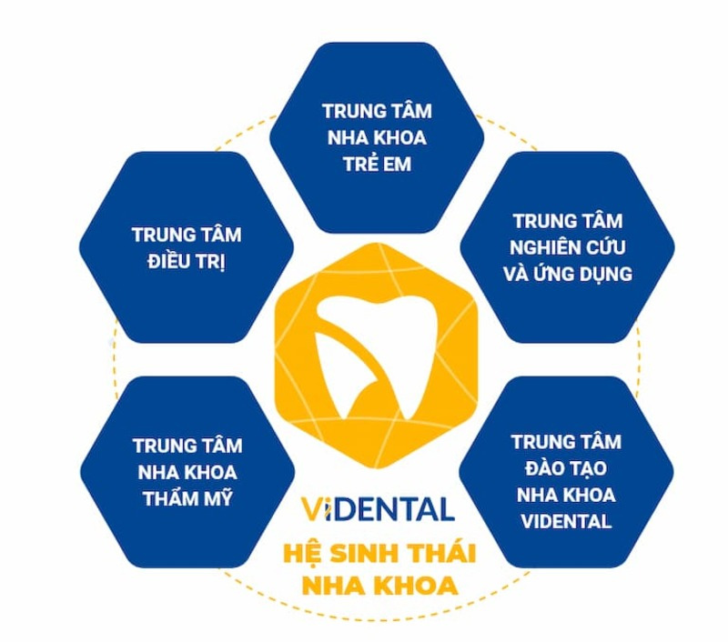 Viện Nghiên cứu và Ứng dụng Công nghệ Nha khoa Việt Nam cung cấp nhiều dịch vụ khác nhau