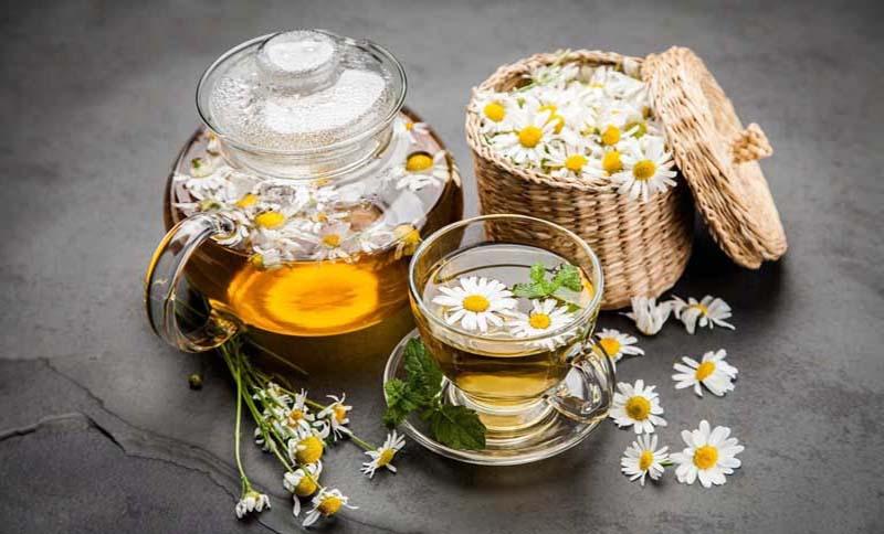 Hoa cúc còn có tác dụng giảm hôi miệng