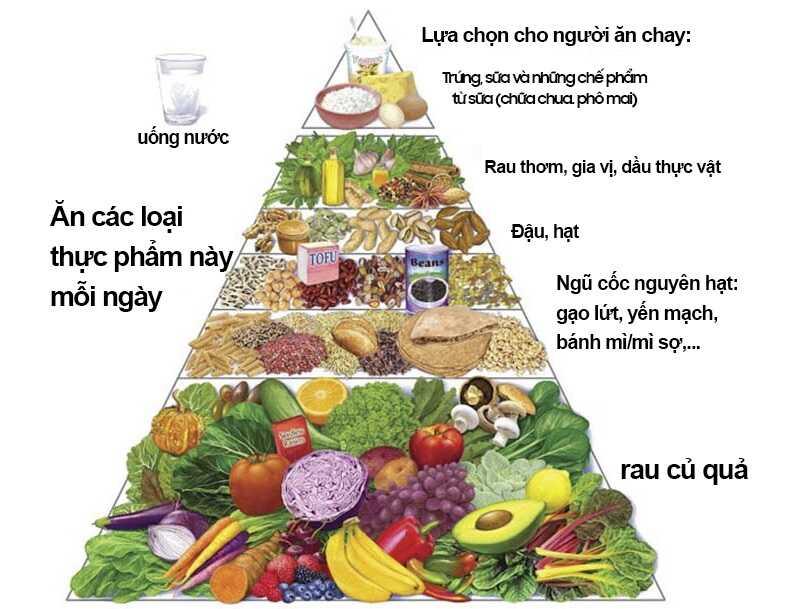 Nên ăn uống đầy đủ chất dinh dưỡng